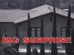 vintage 70s danish - Big Surprise - cc79