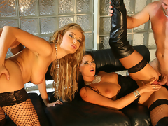 Delightful hot beauties ridding studs side by side